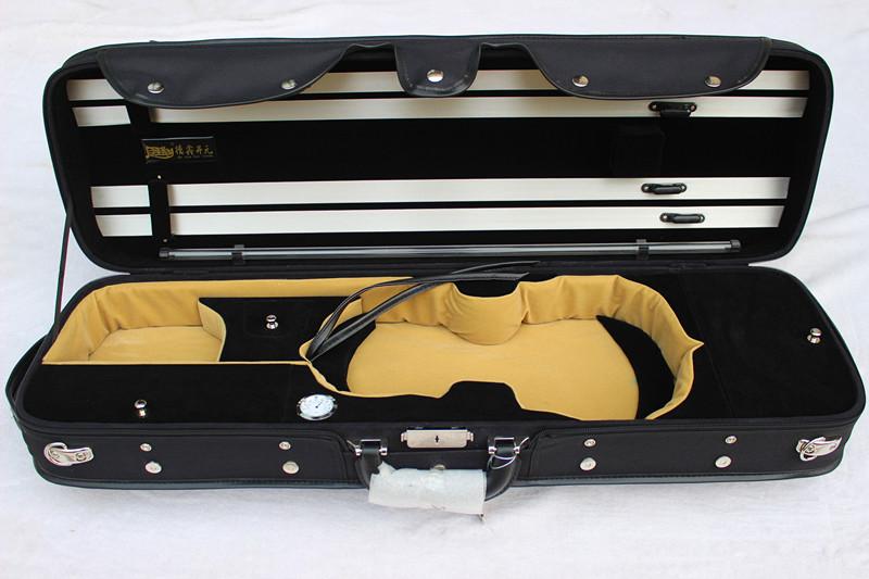 Violin Case #1