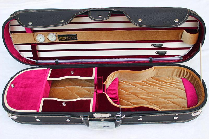 Violin Case #3